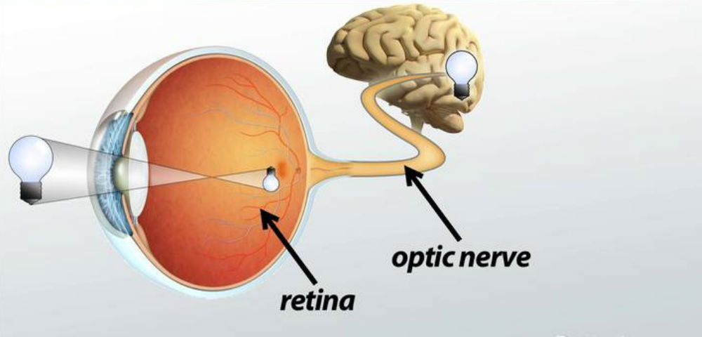 Optic-Nerve-Block-Treatment